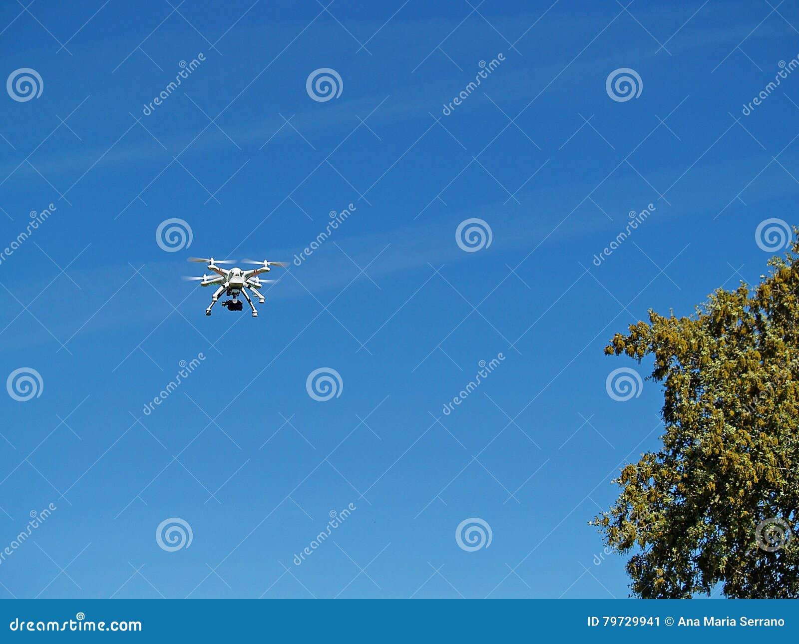 Dron sobre árboles