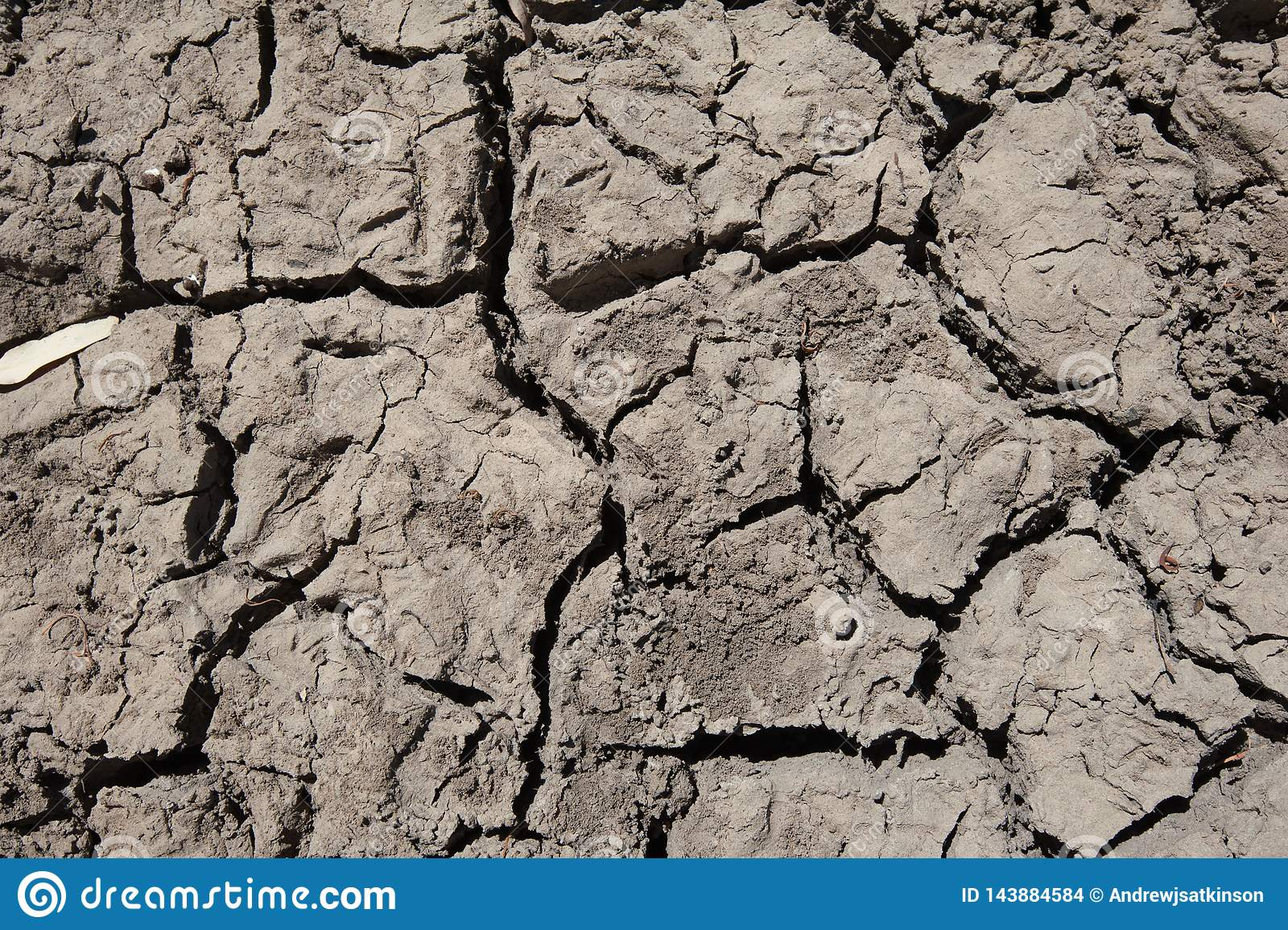 Droog gebarsten modder vormt patroon