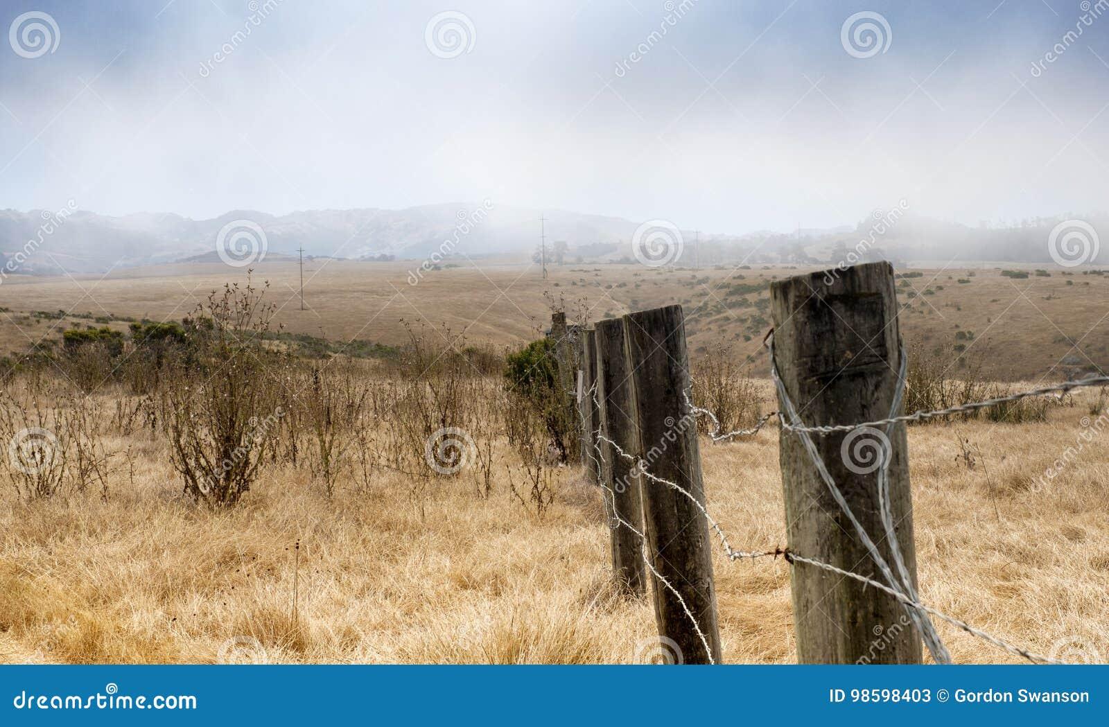 Droog grasgebied in Hearst San Simeon State Park