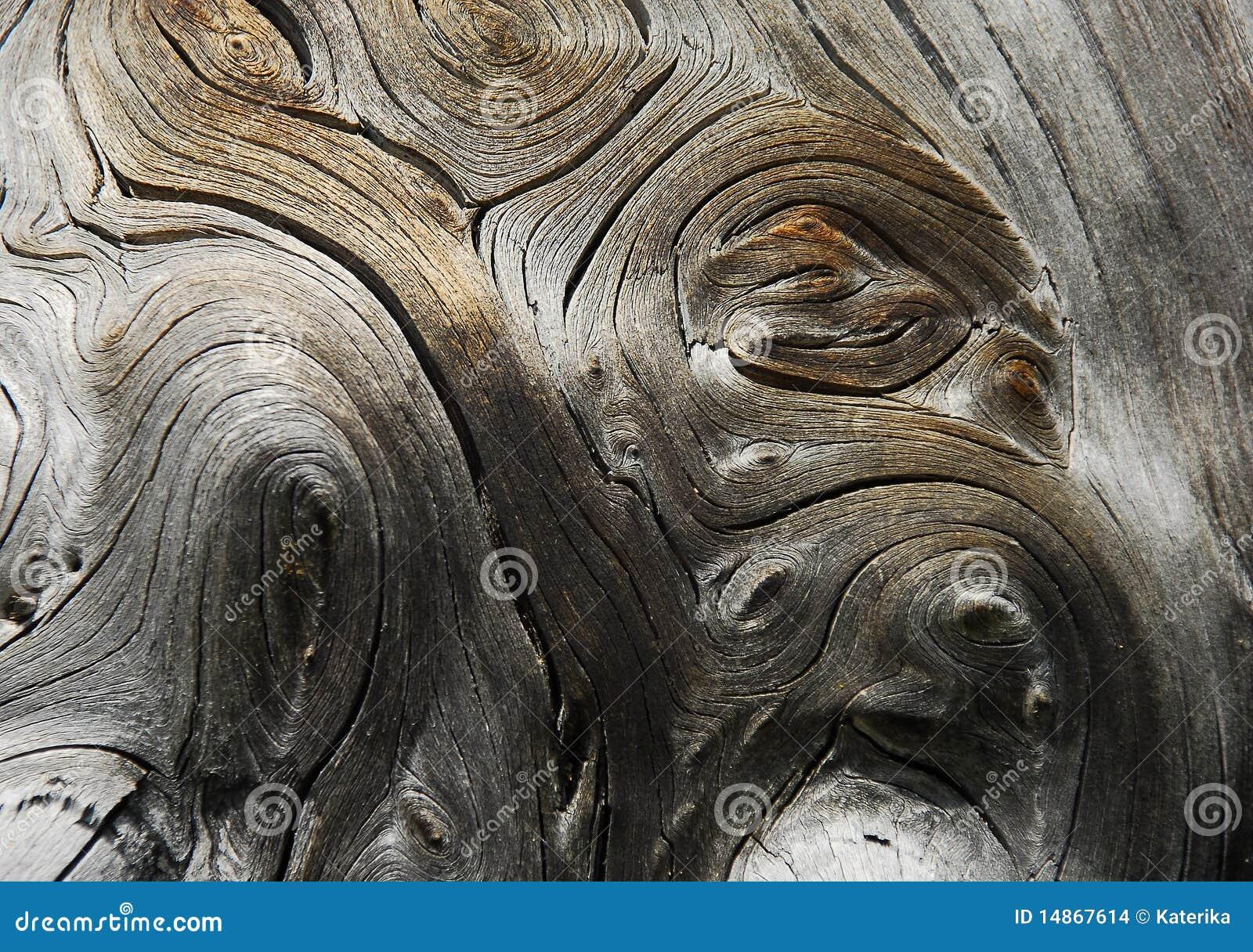 Droog hout