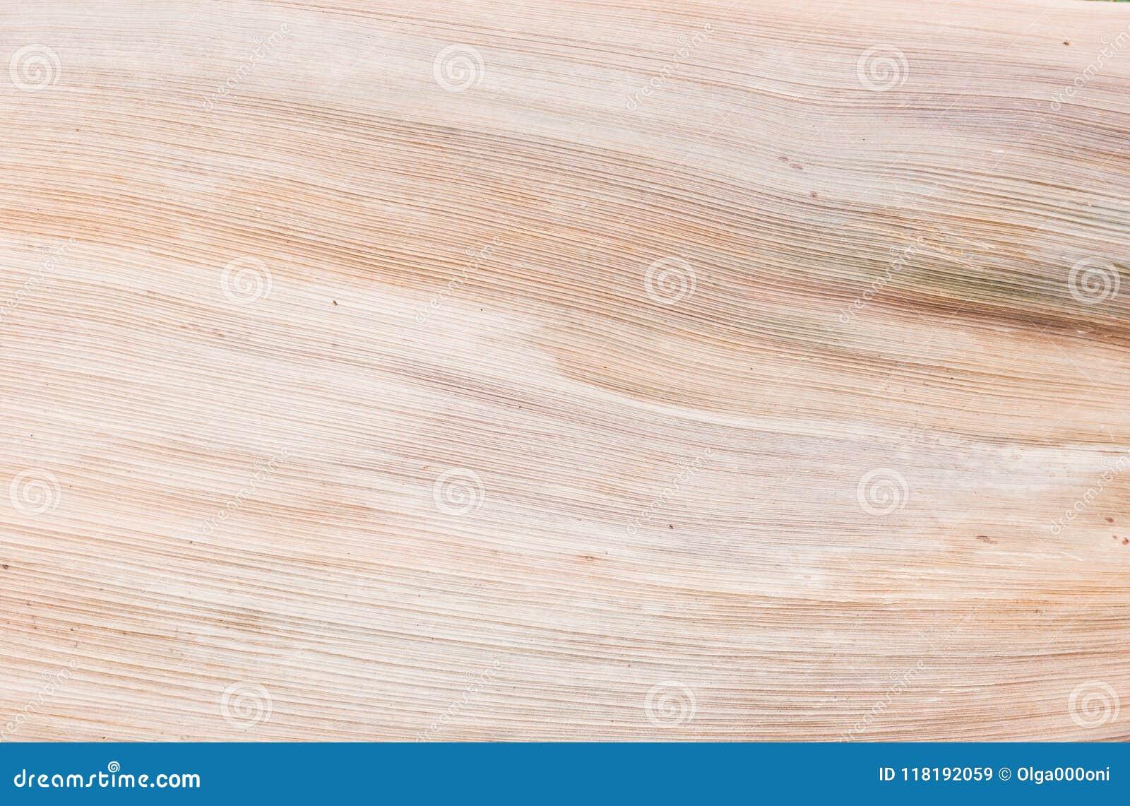 Droog natuurlijk palmblad, organische textuur