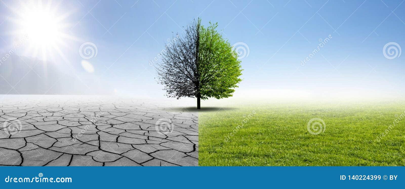 Droogte en Groene Aard