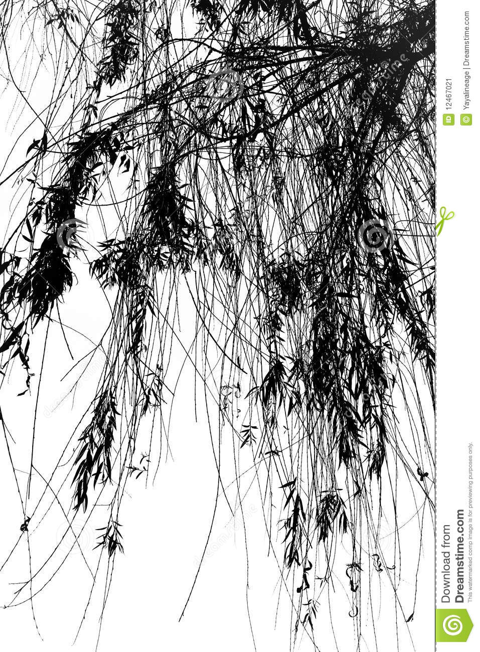 Star Clipart Droopy Tree Branches S...