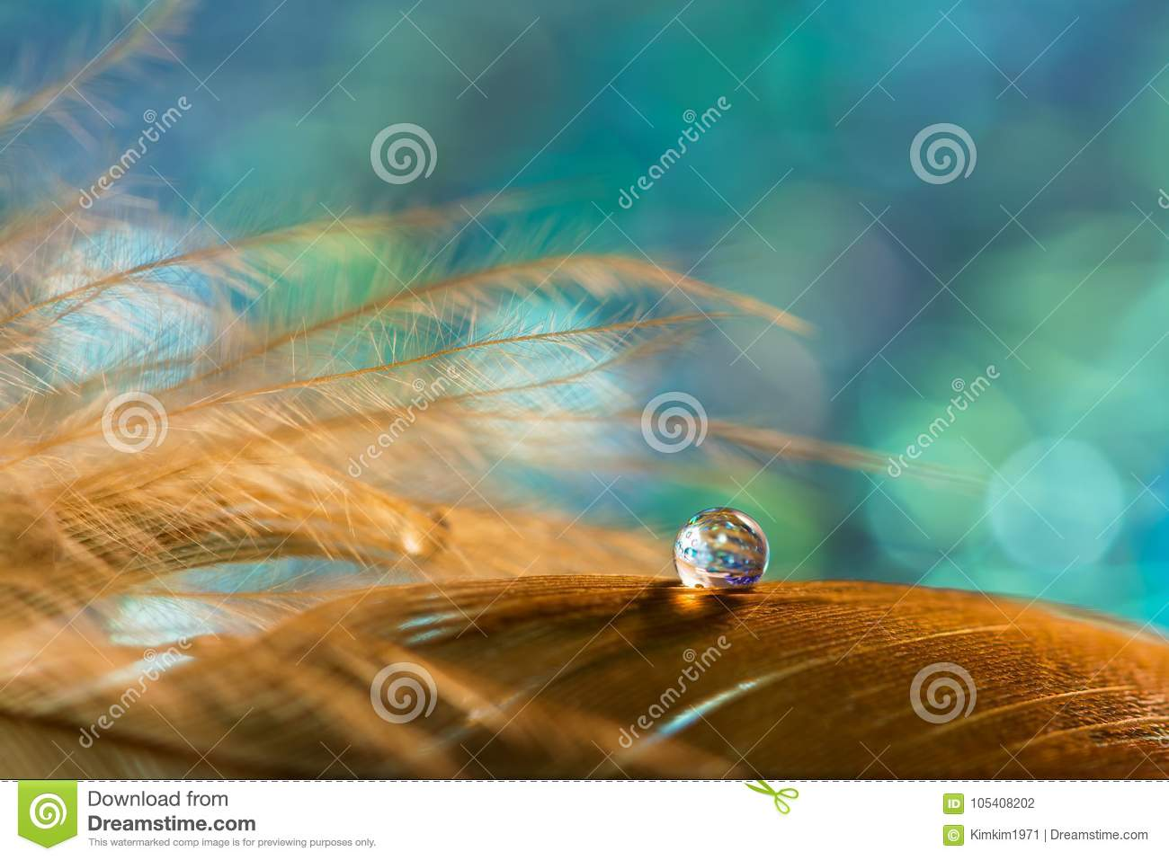 A drop on the golden feather of the bird on an emerald background. Beautiful stylish macro.