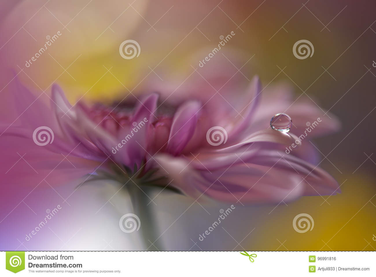 Drop on yellow background closeup.Tranquil abstract closeup art photography.Print for Wallpaper...Floral fantasy design...