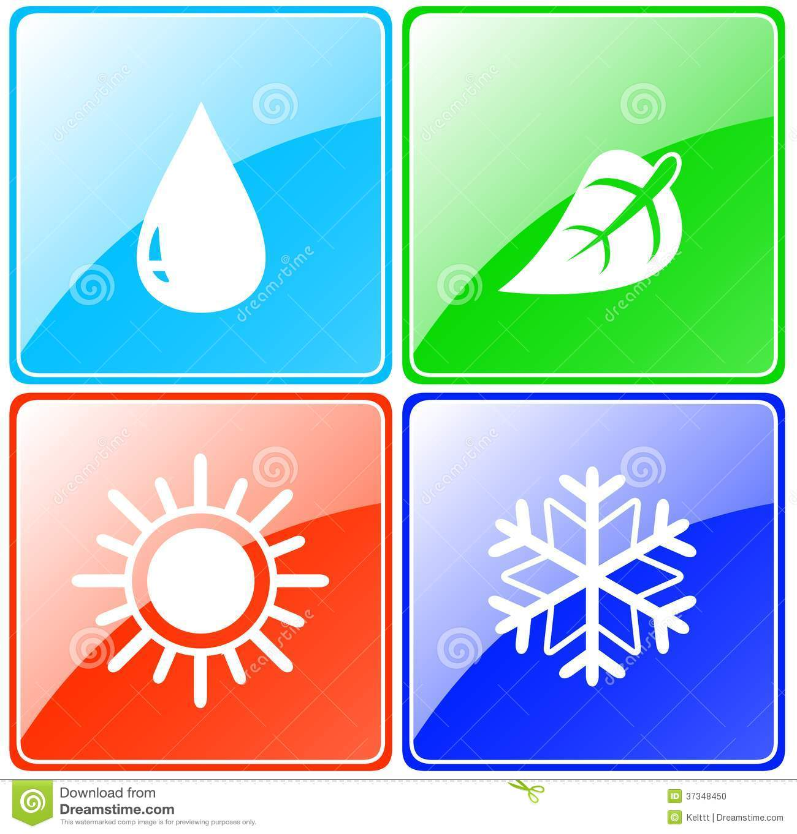 Droppe sol, snöflinga, bladknapp