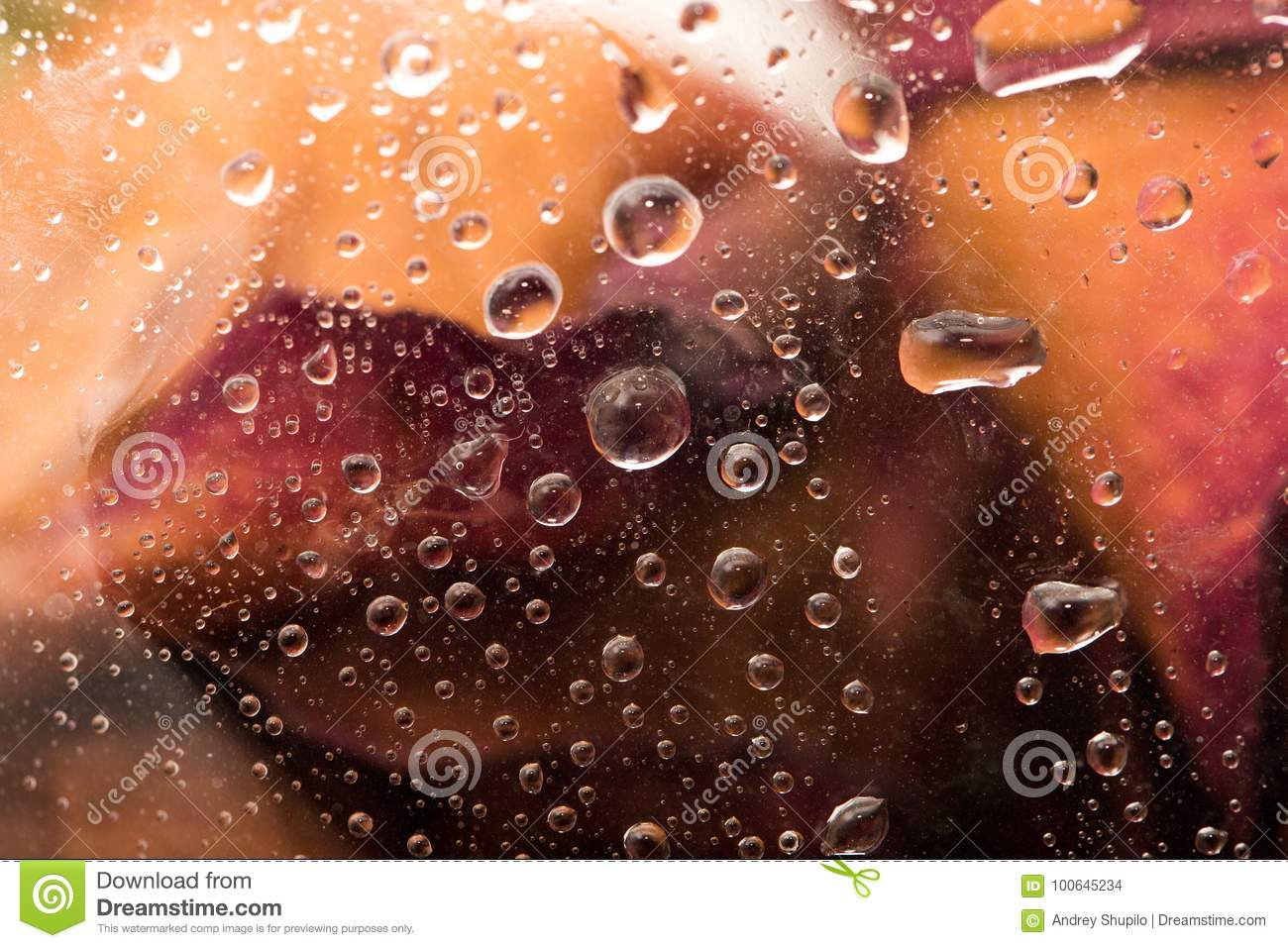 Drops On The Cellophane On Flowers Stock Photo Image Of