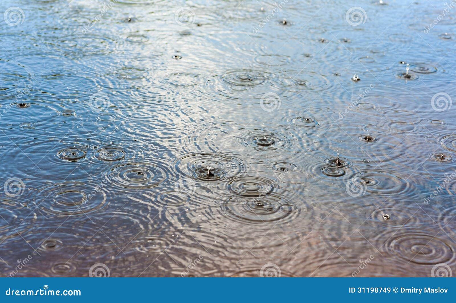 Drops Of Rain Royalty Free Stock Images  Image 31198749 # Sunshower Lake_065423