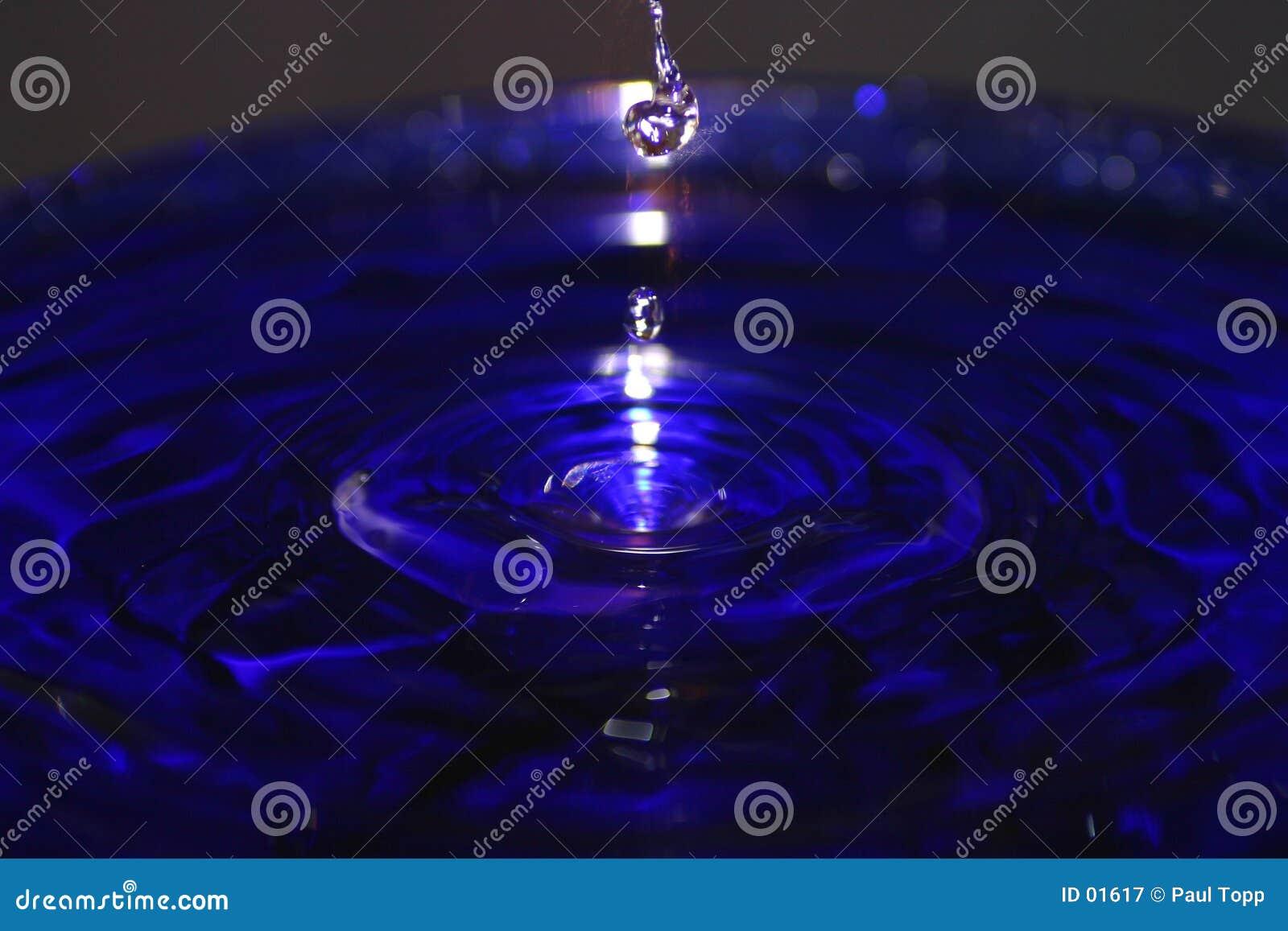 Drops of Water Splashing in a Blue Pool