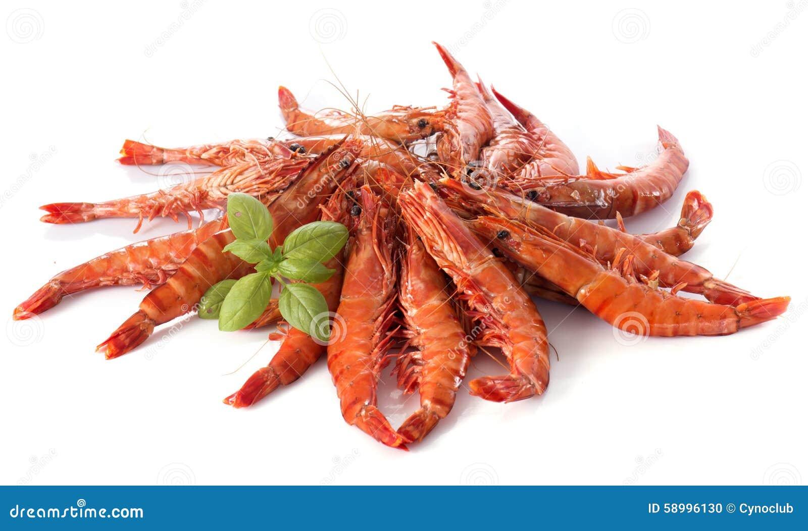 Drunken Shrimp Stock Photo - Image: 58996130