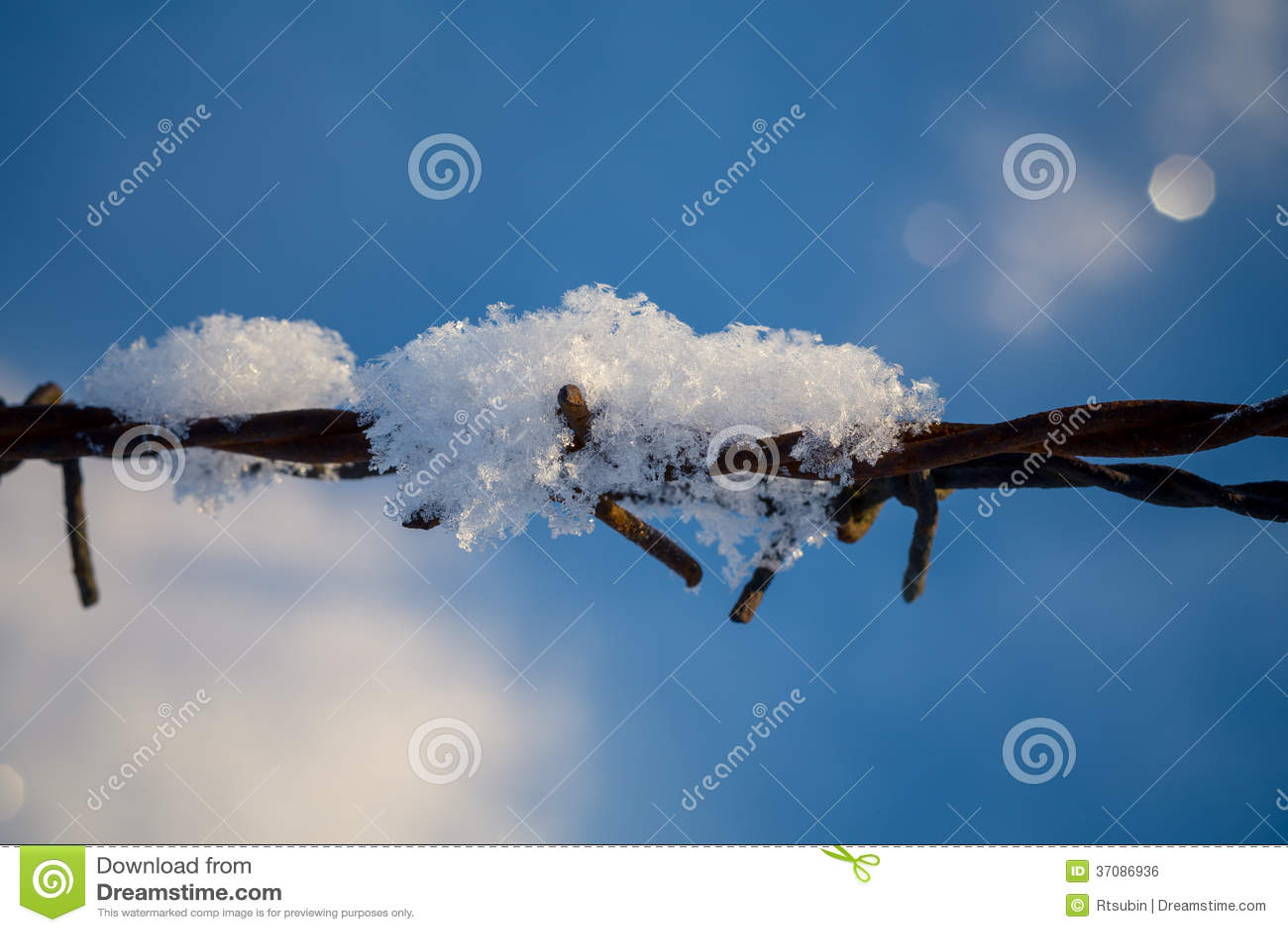 Download Drut Kolczasty W śnieżnych łąkach Zdjęcie Stock - Obraz złożonej z zimno, fielder: 37086936