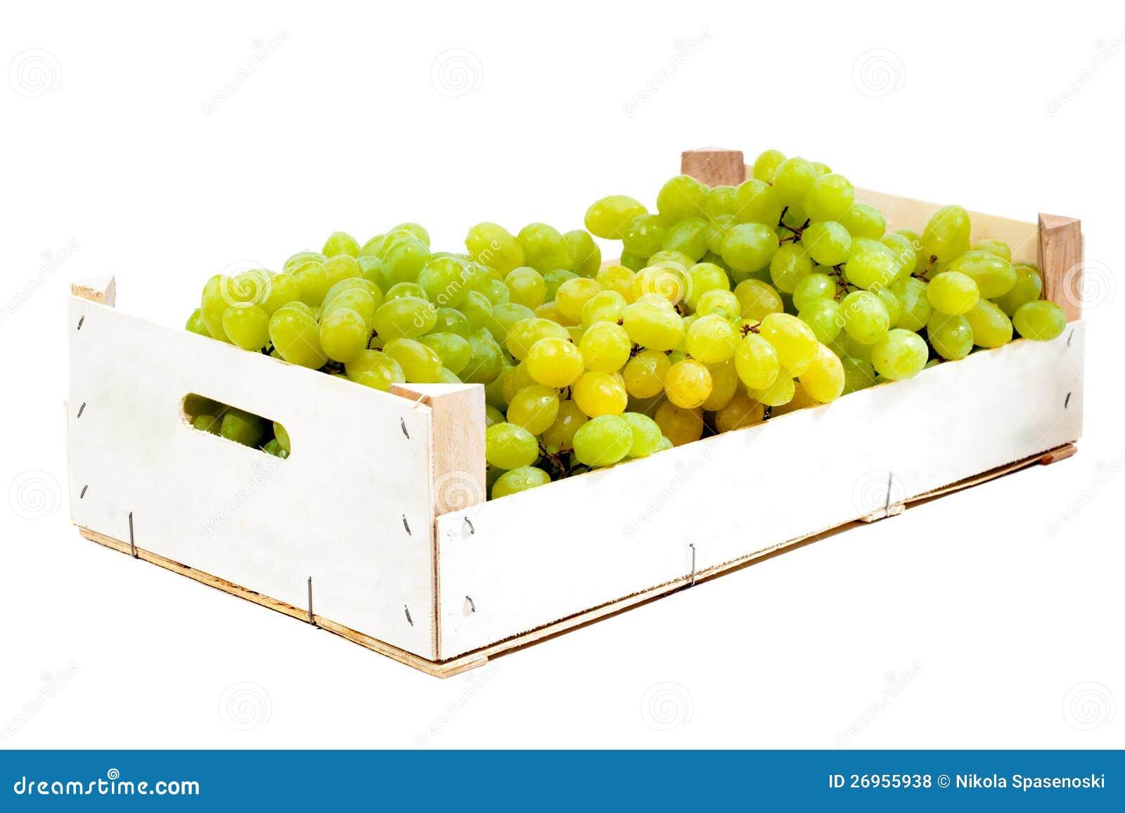 Druvor i en träask