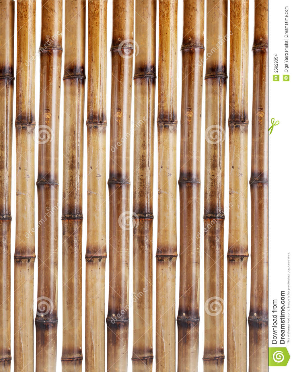 Single Bamboo Stick
