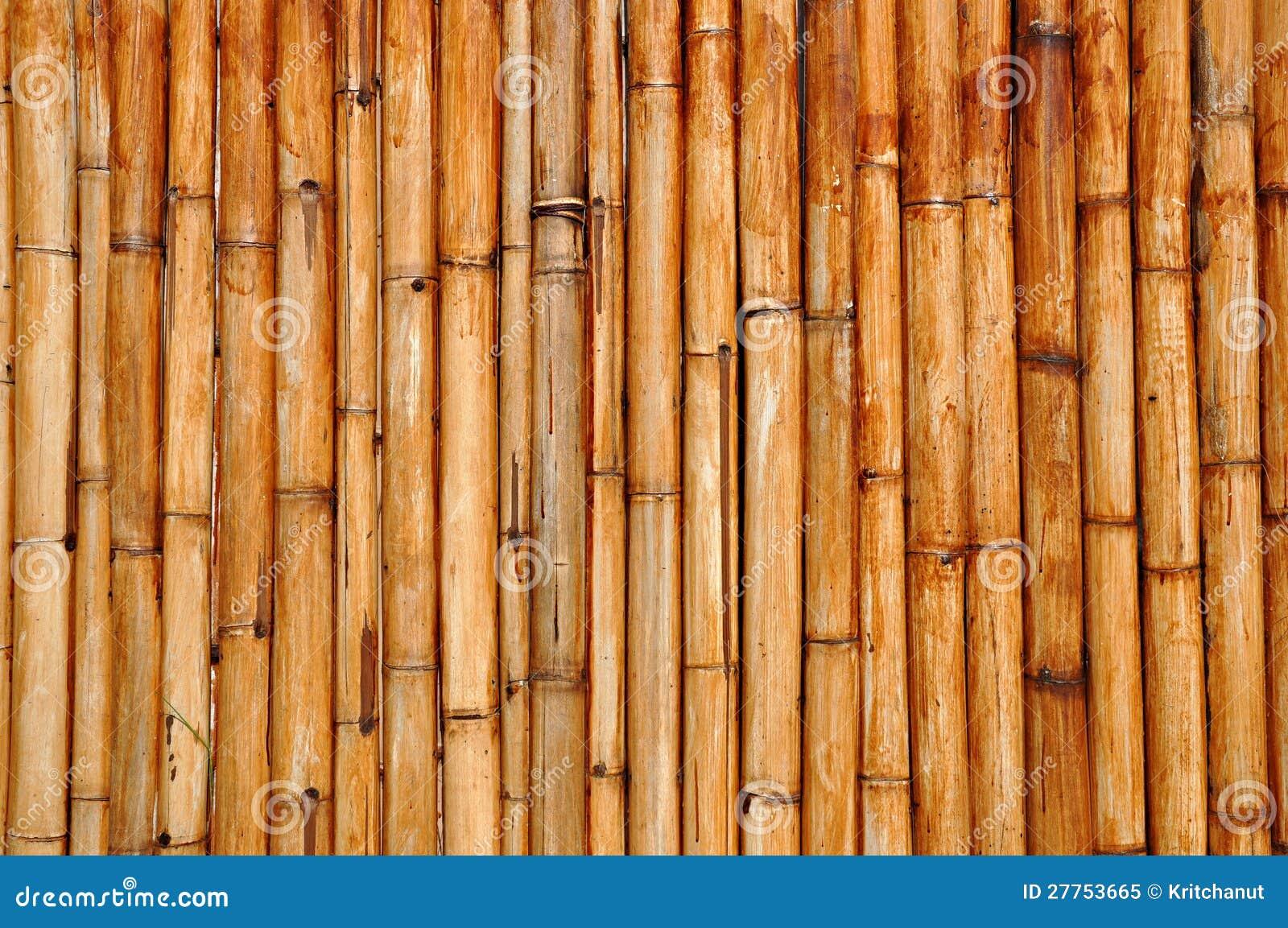 Cartoon Bamboo Stick ~ Dry bamboo stalk wall royalty free stock photo