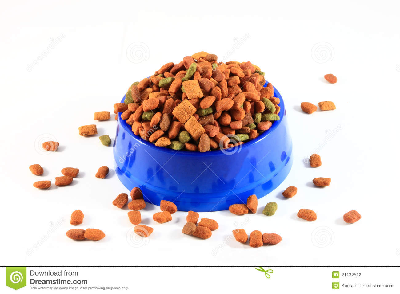 Cat Dry Food Only