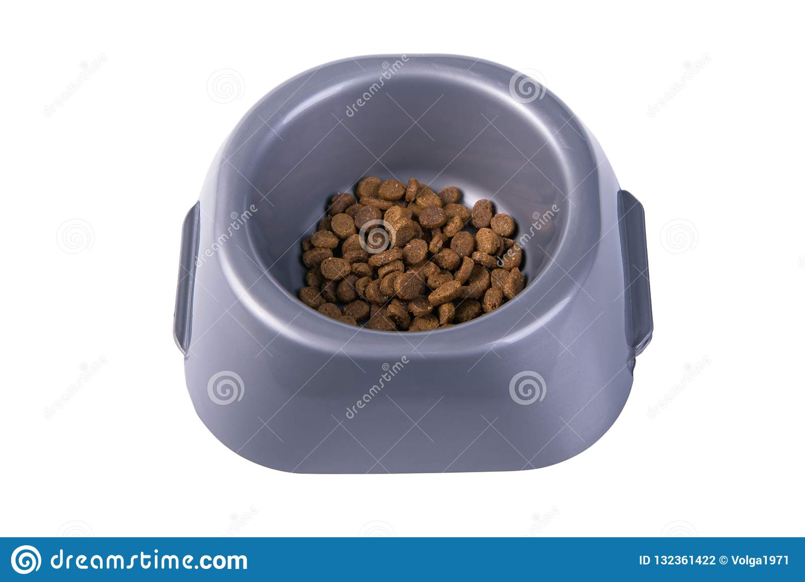 Bowl with dry cat food