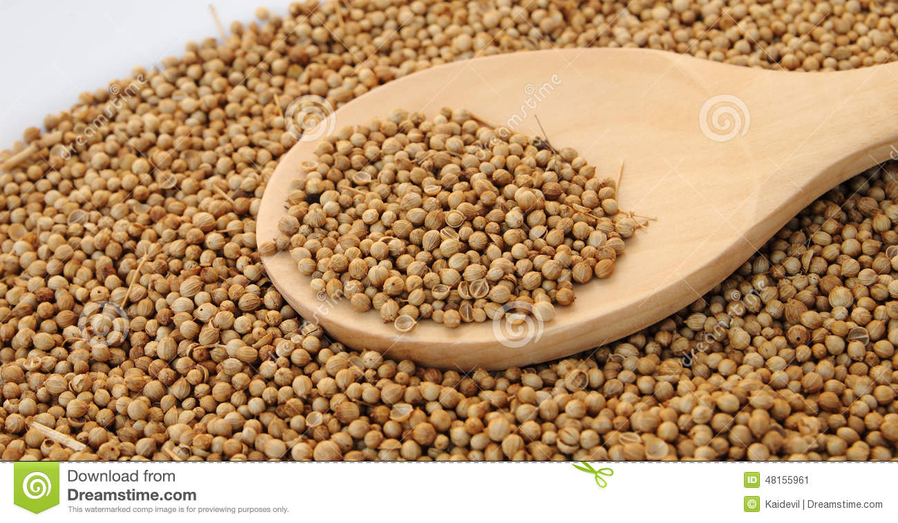 Dry constrain seed in the wooden spoon
