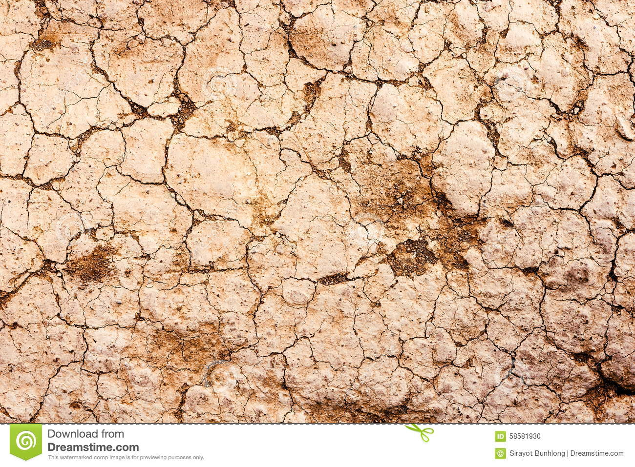 Dry cracked earth texture.