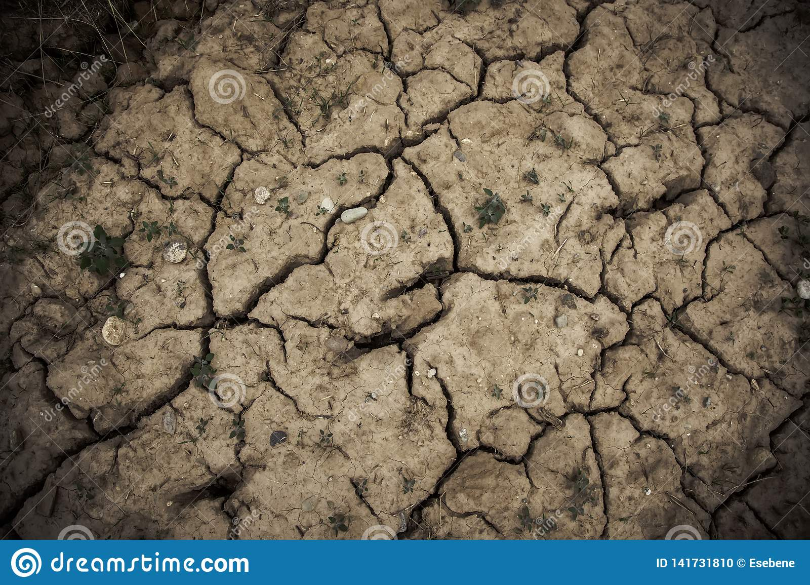 Dry and cracked soil