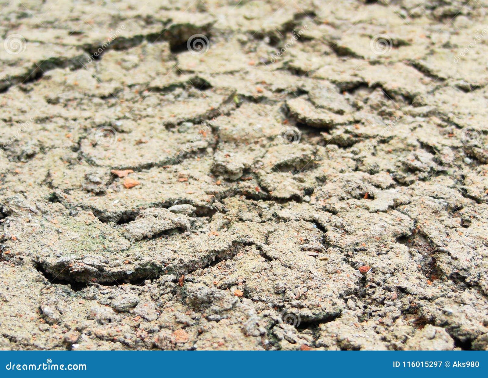 dry draught cracked grey soil terrain texture summer