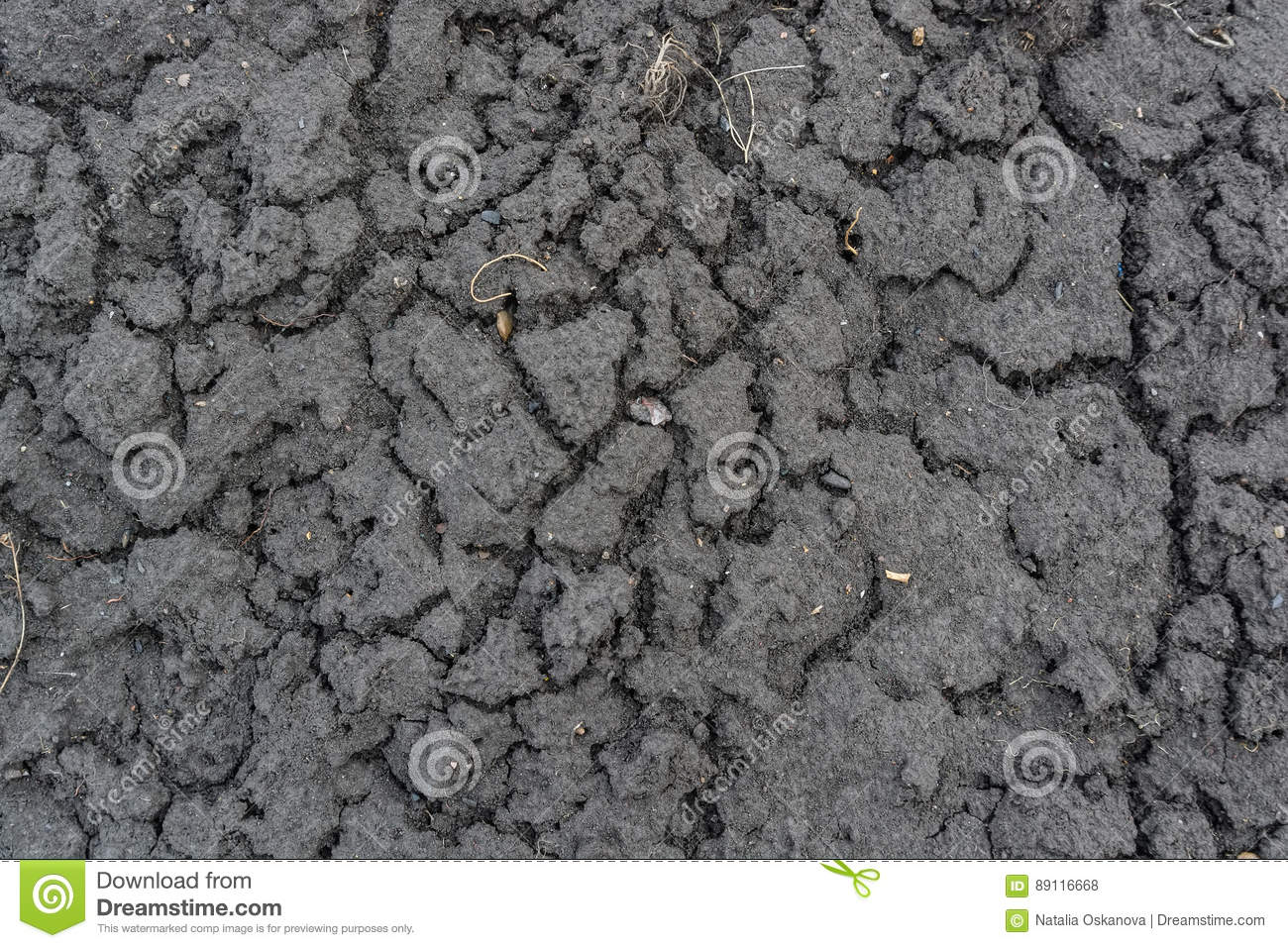 Dry fall ground with cracks