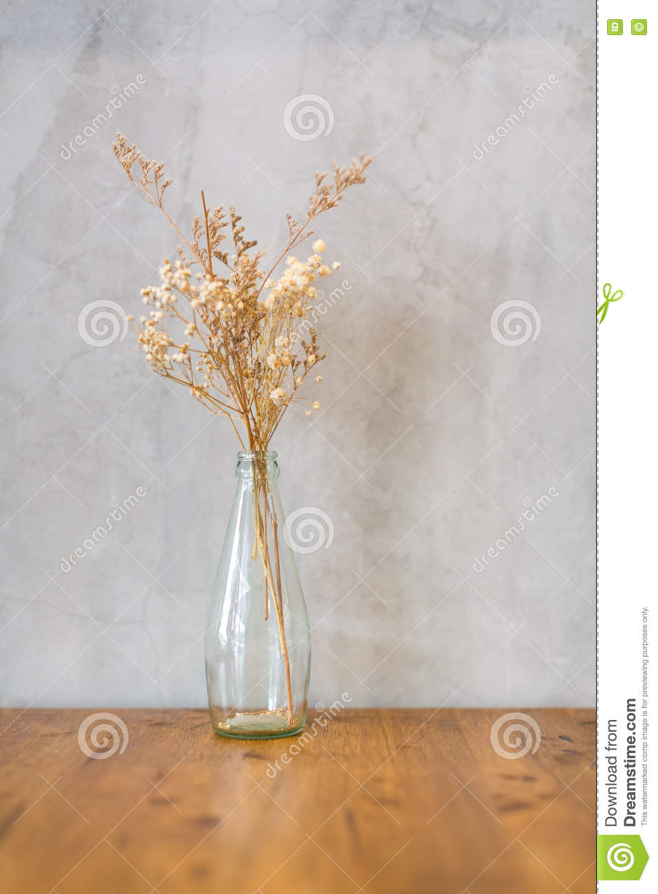 Dry Flower In Tall And Transparent Vase Stock Image Image Of Card Coral 73894067