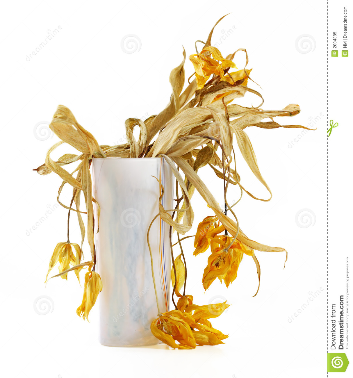 clipart dead flowers - photo #7