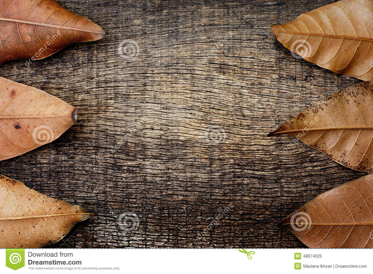time of a leaves end Instructions on how to harvest, dry and store herbs  before summer's end  contents from time to time to prevent settling once dried, leaves are easily.