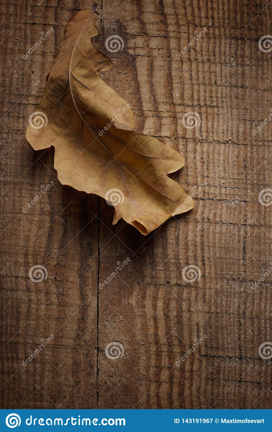 dry leaves on wooden background
