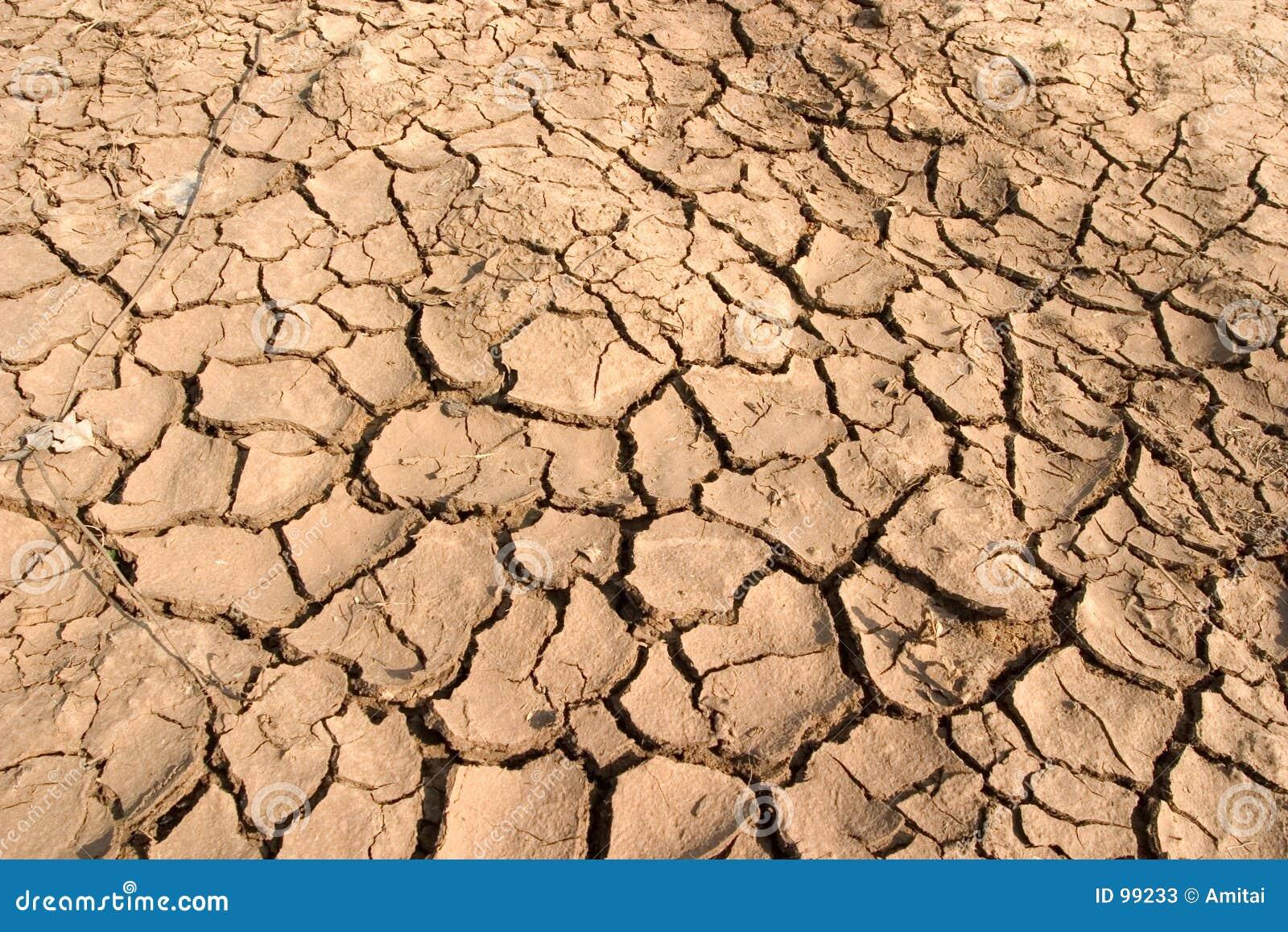 Dry Mud Stock Photos Image 99233