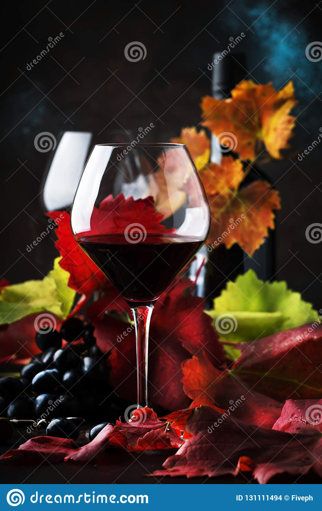 Dry Red Wine From Pinot Noir Grapes In Large Glasses, Autumn