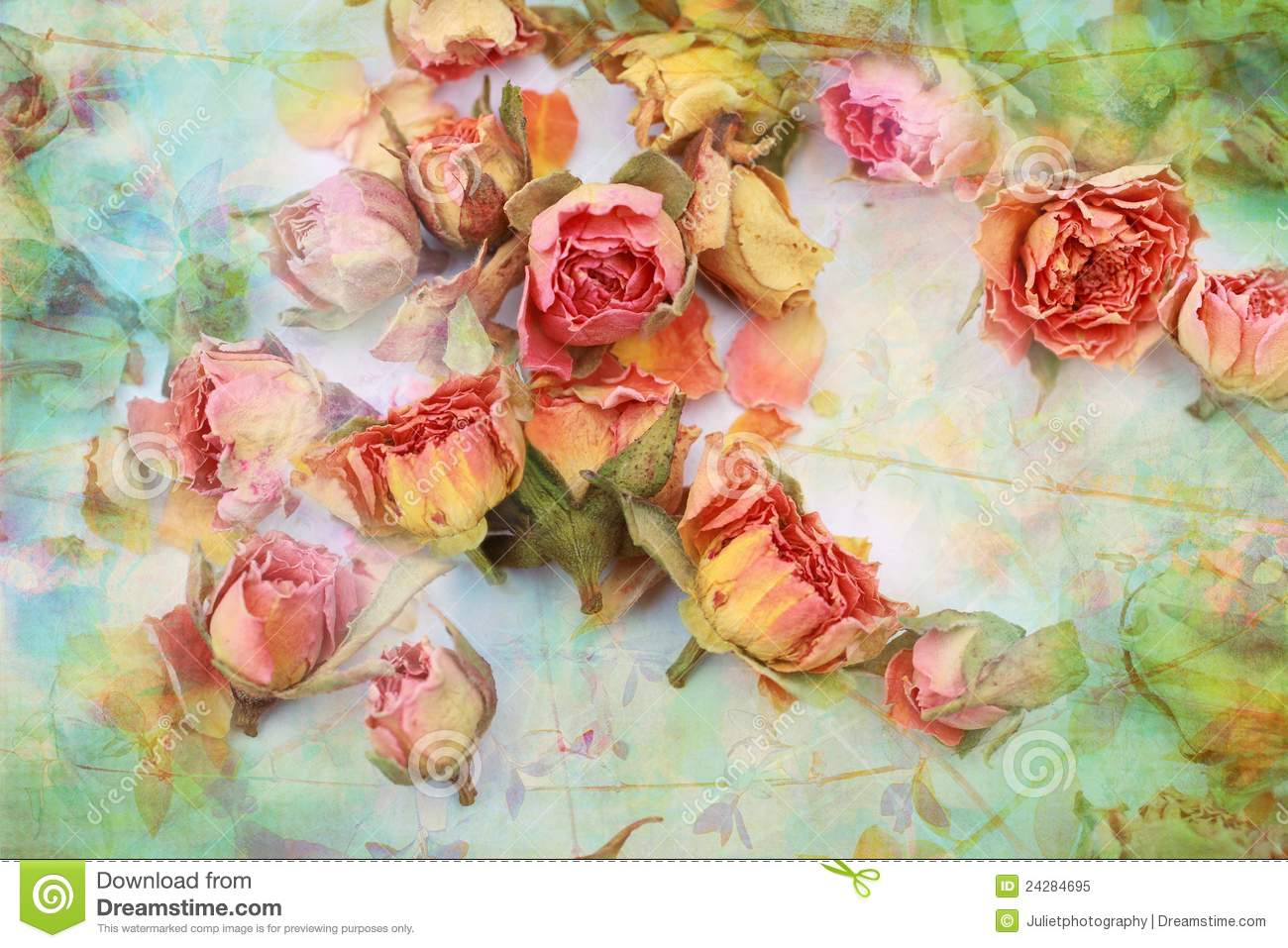 Dry Roses Beautiful Vintage Background Royalty Free Stock ...
