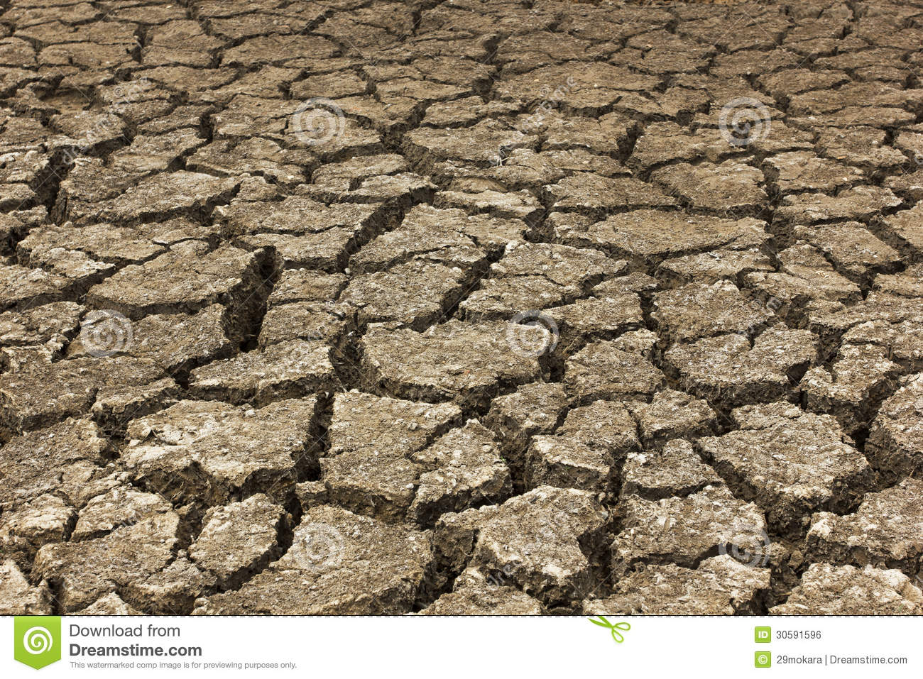 Dry Soil Arid On A Summer Season Stock Photo - Image: 30591596
