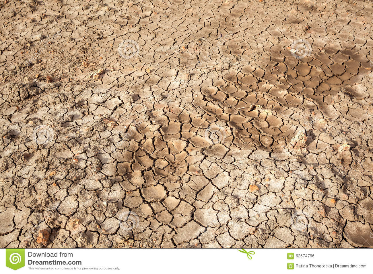 Dry soil crack texture land area can use as background for Pictures of uses of soil