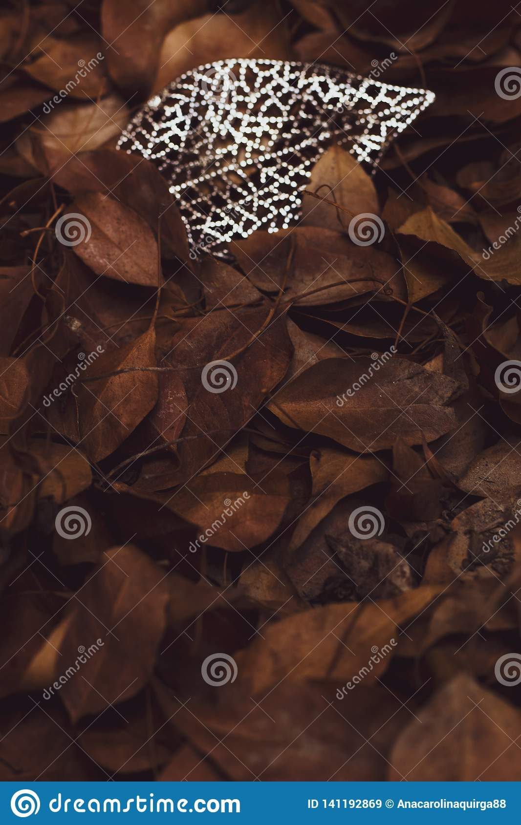 Dry tree leaves, between crystals. It symbolizes maturity and femininity.