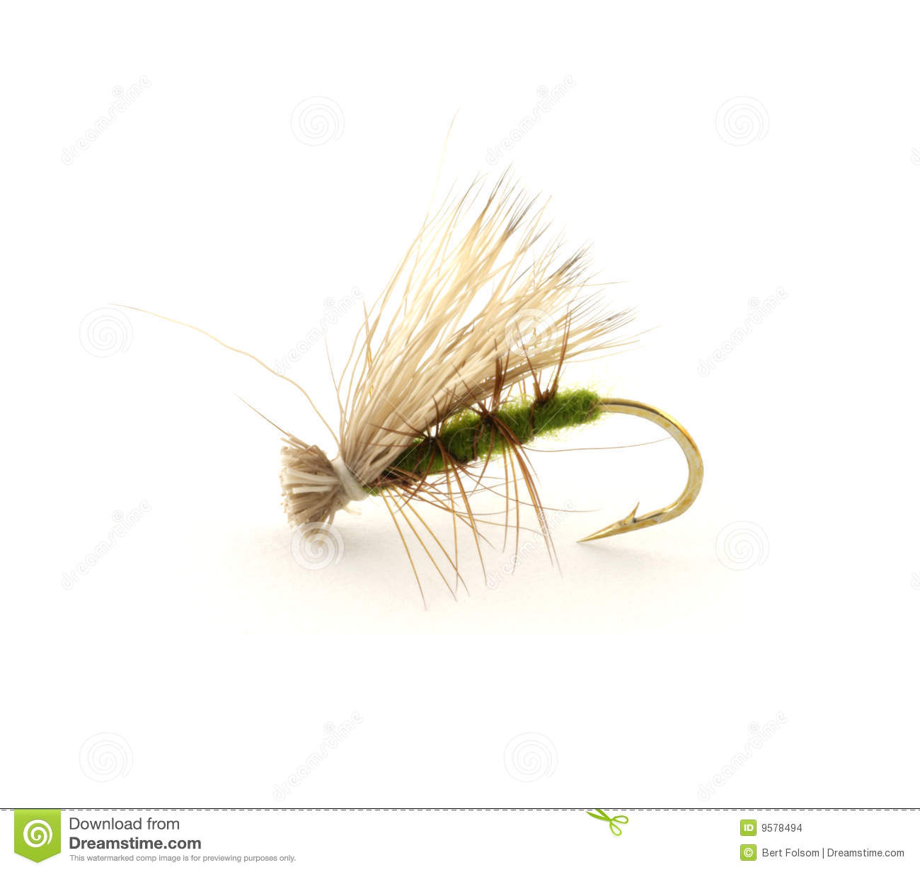 single dry fly for trout fishing against a white background.