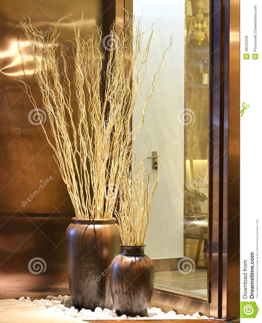 Dry Twigs Decorative Branch Mikie Flower Stock Photo