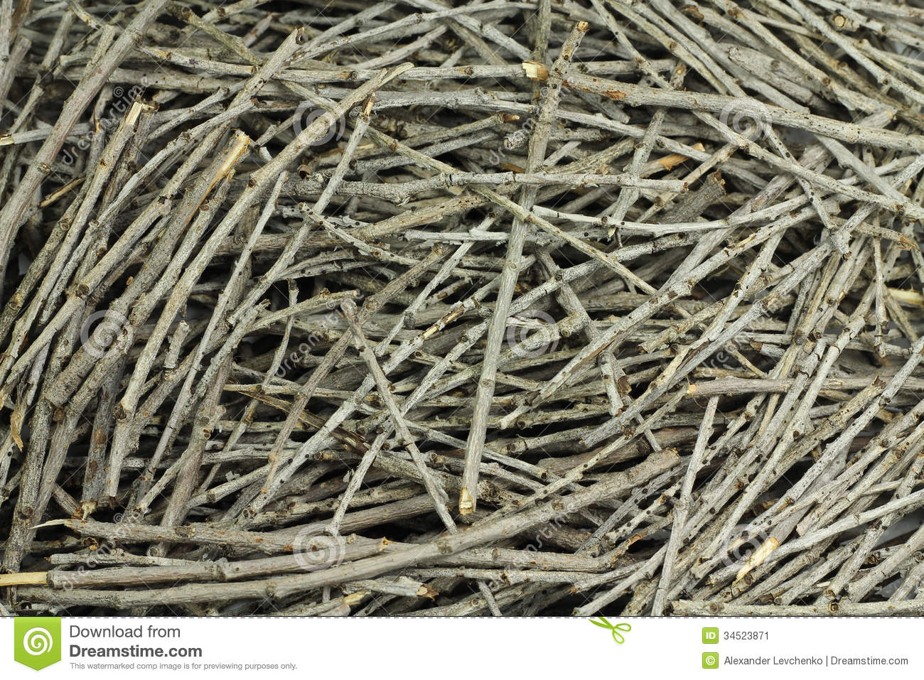Dry Twigs Stock Image - Image: 34523871