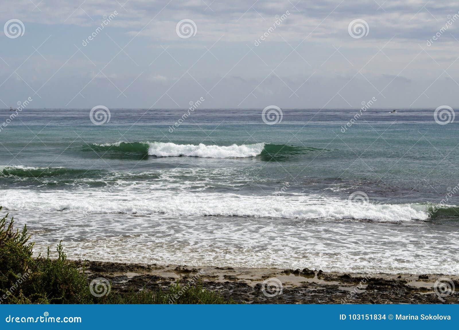 Dryftowego morza Śródziemnego połowów tuńczyka morski netto
