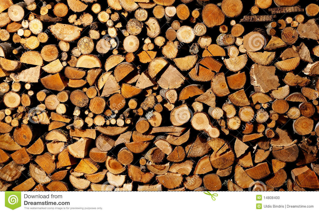 Drying Firewood Stock Photo Image 14808400