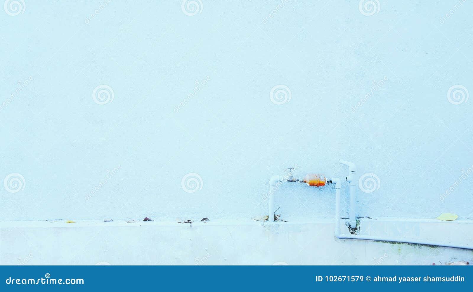 Drymba na ścianie
