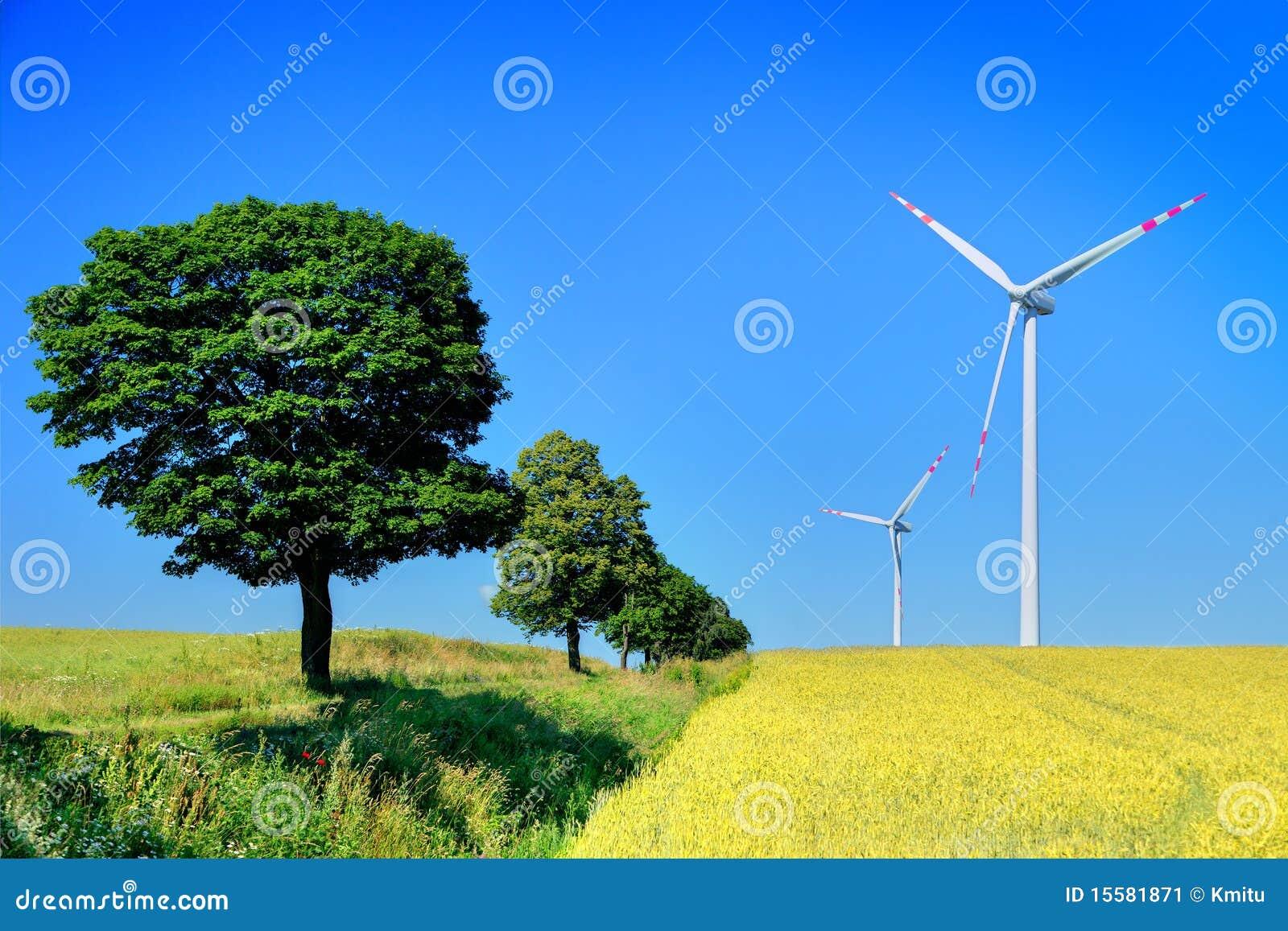 Drzew turbina wiatr