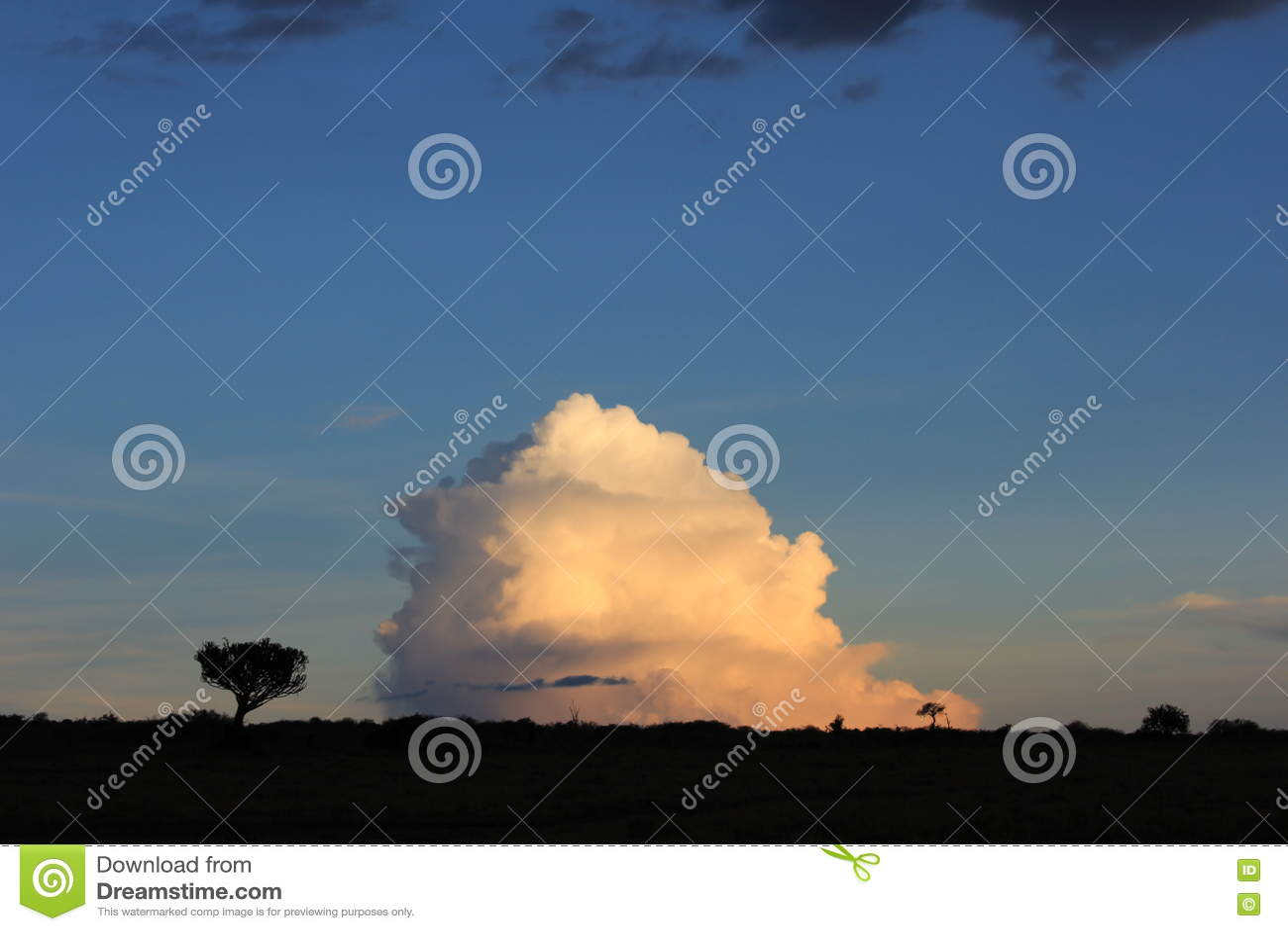 Drzewa versus chmury 2