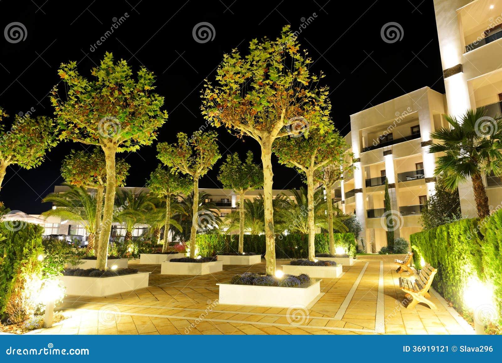 Drzewa w nocy iluminaci przy luksusowym hotelem