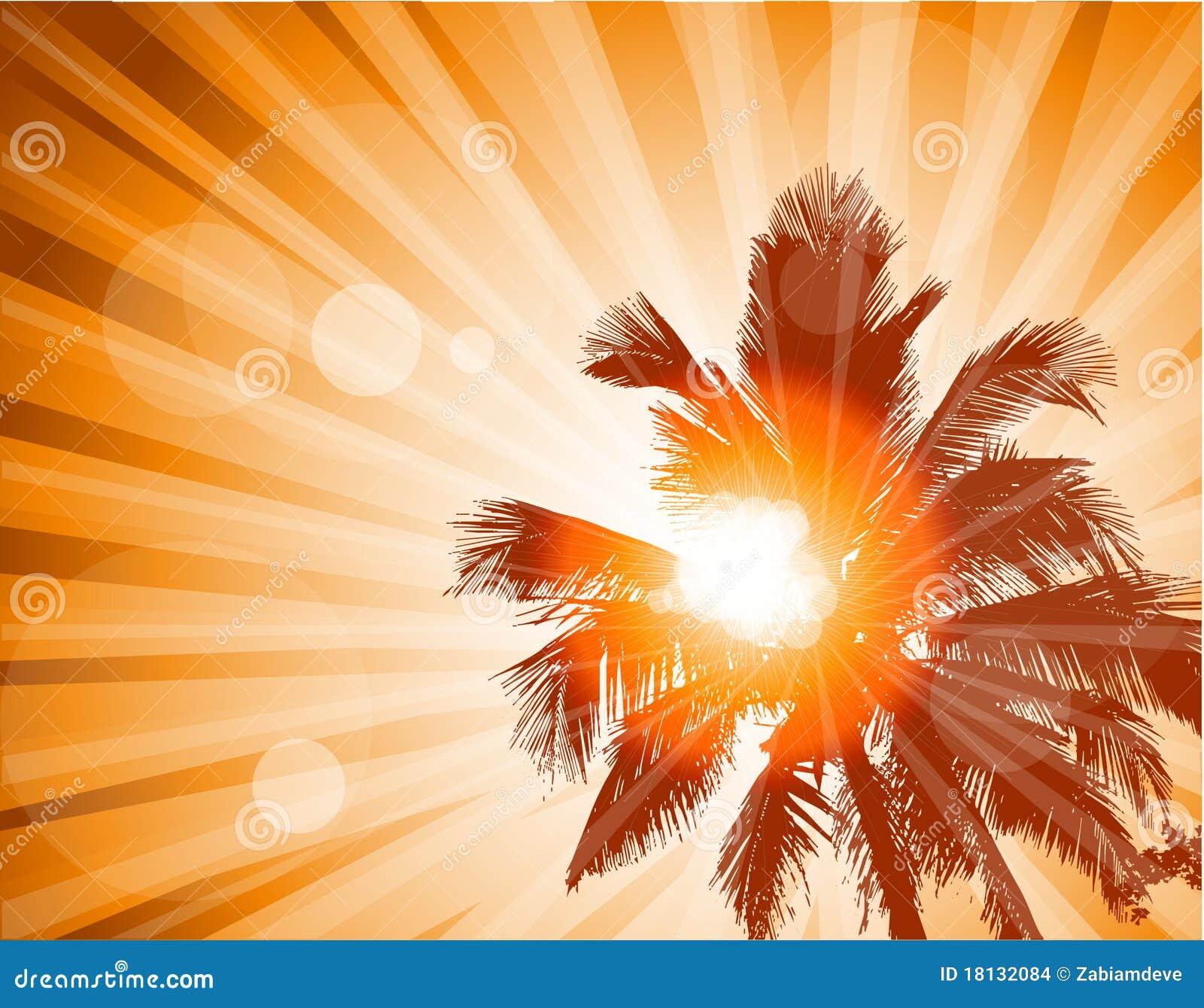 Drzewka palmowe