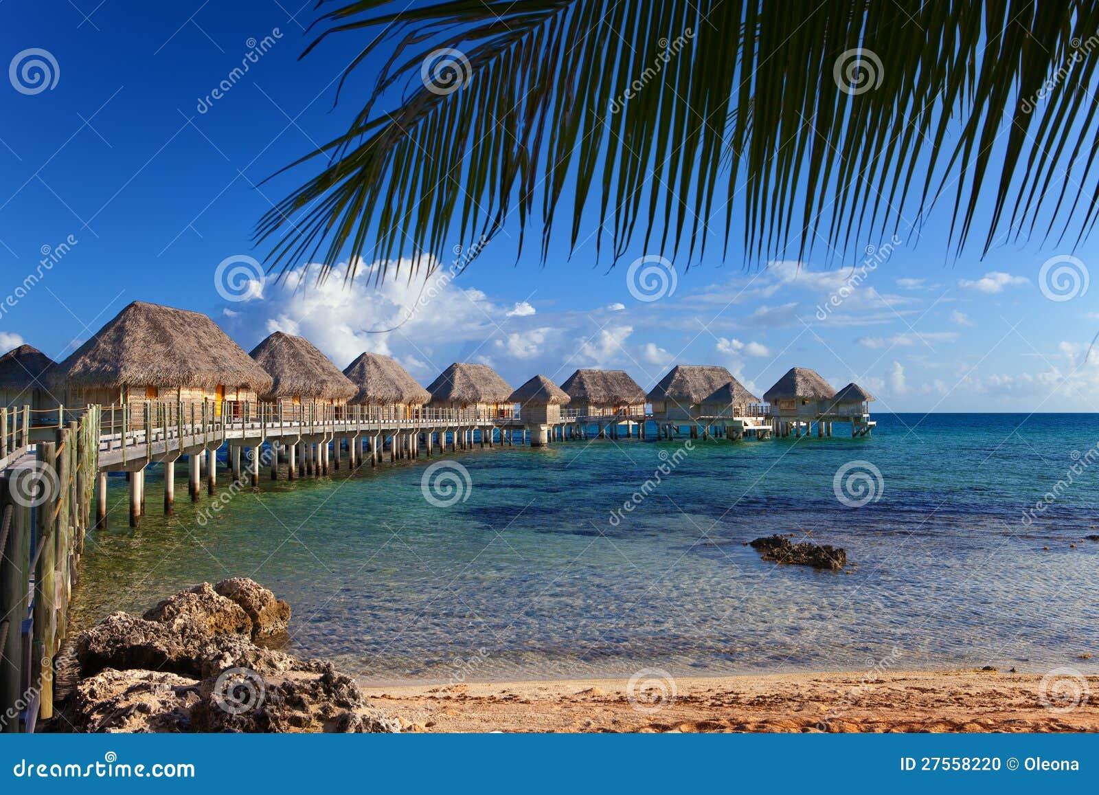 Drzewka palmowe i mali domy na wodzie
