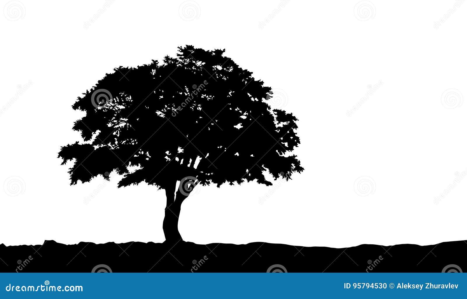 Drzewo na wzgórze sylwetce na wektorze
