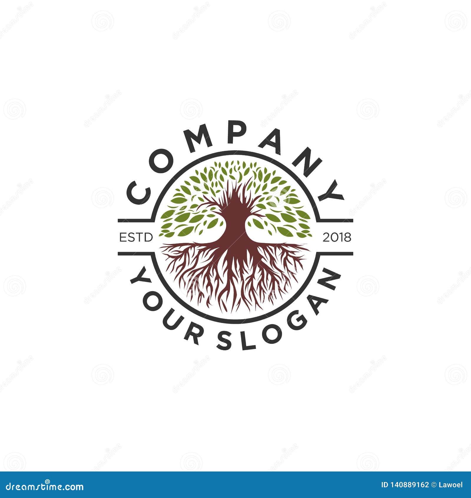 Drzewo oliwne logo projekty, korzeniowy logo