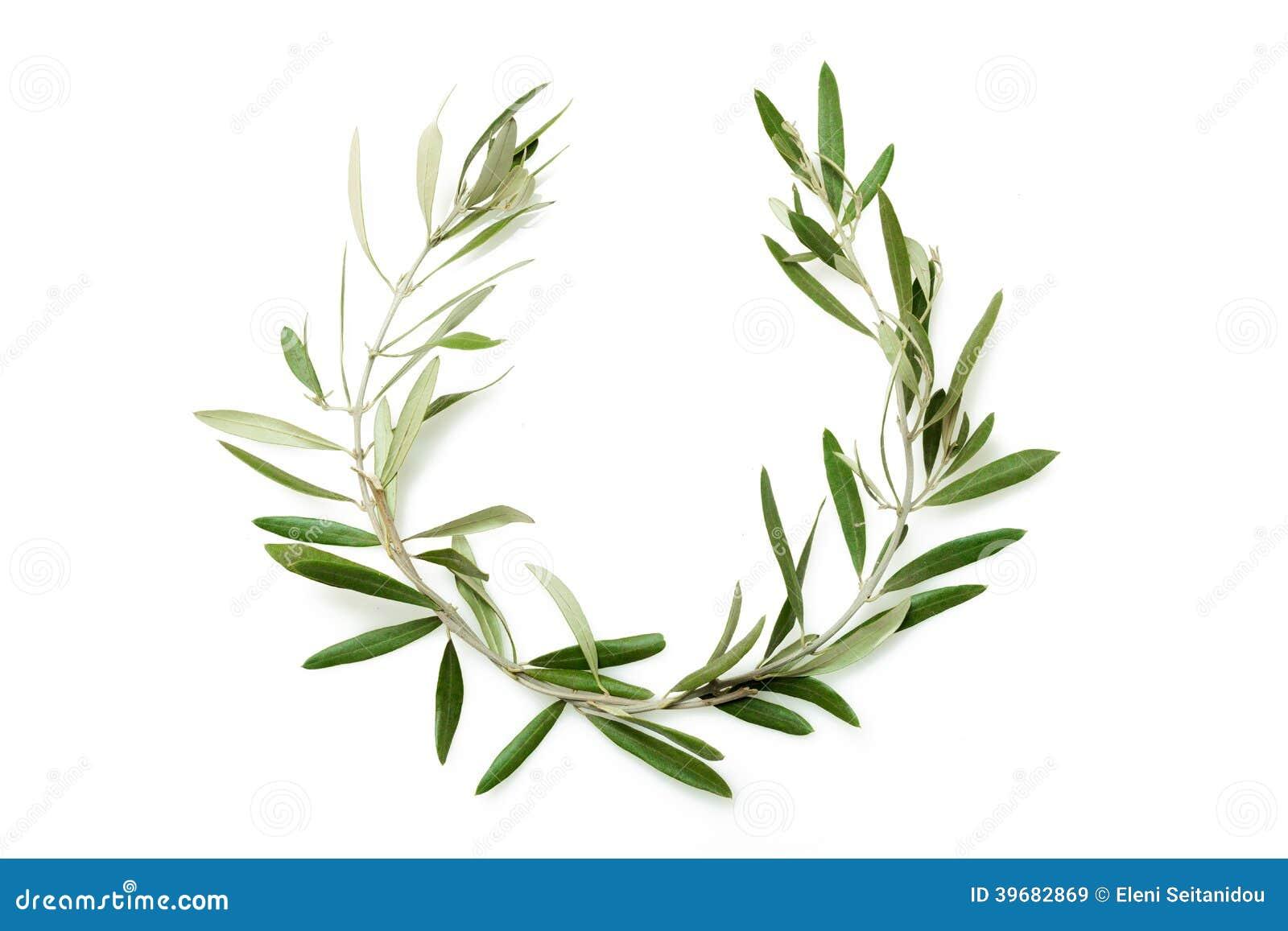 Drzewo oliwne wianek