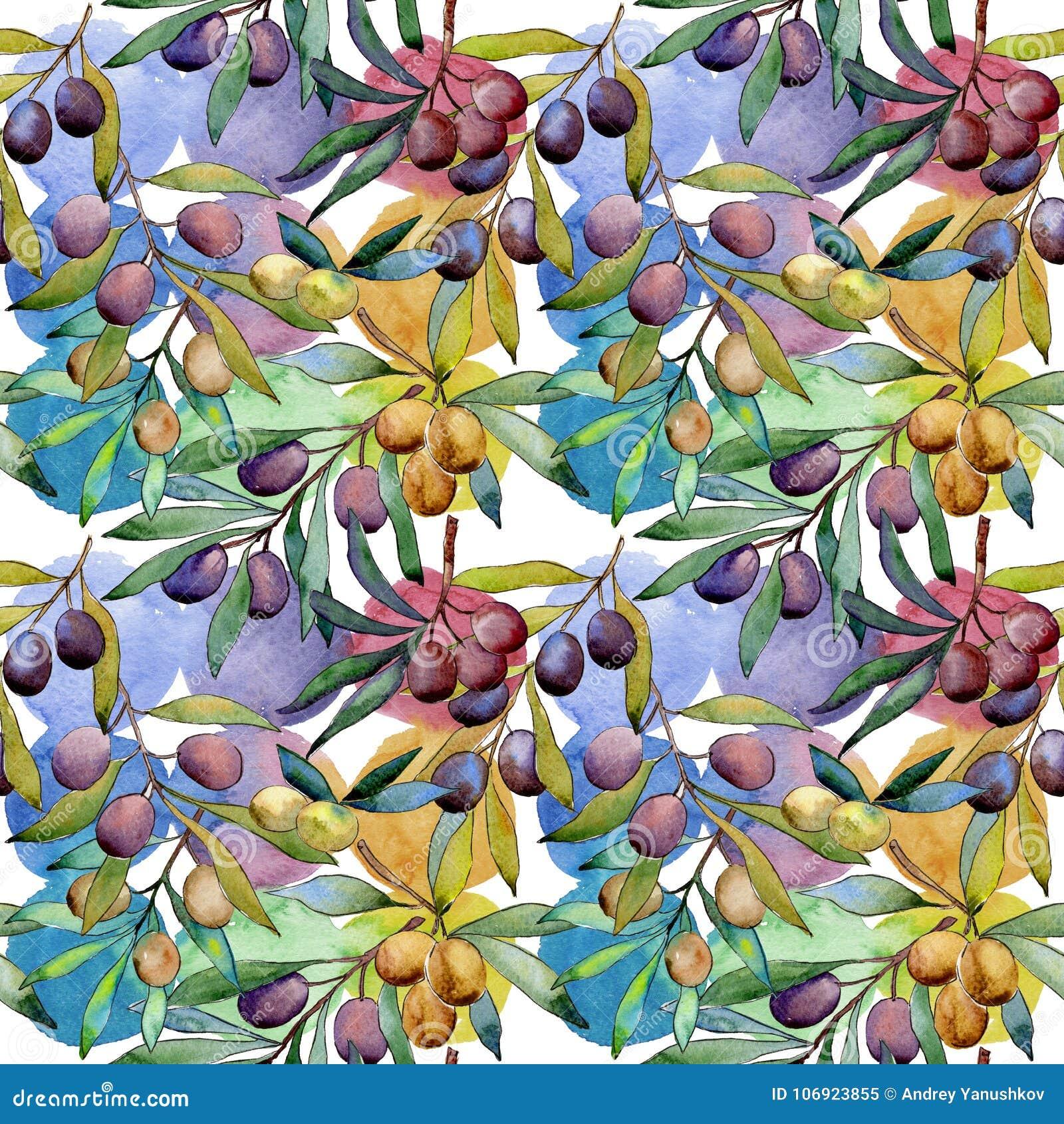 Drzewo oliwne wzór w akwarela stylu
